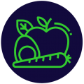 CHEW Nutrition and Dietetics